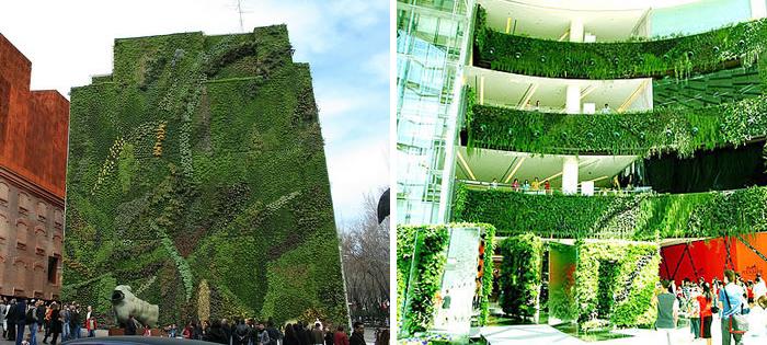 living walls2 Alles im grünen Bereich