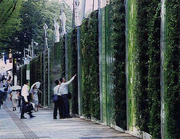 parabienta Alles im grünen Bereich