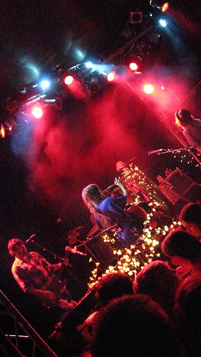 angus julia stone Bild 244 Zwischen Kirschblüten Lampen   Angus & Julia Stone live