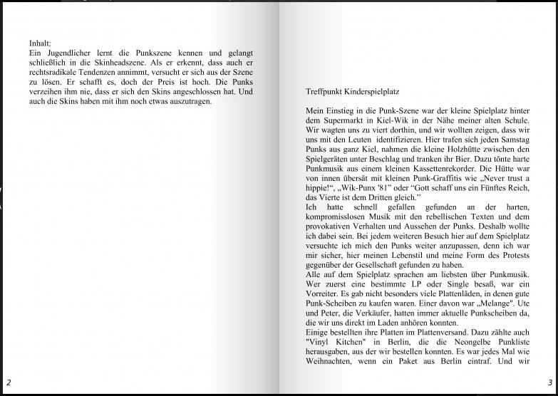 Bild 32 Punk in Schleswig Holstein, in echt