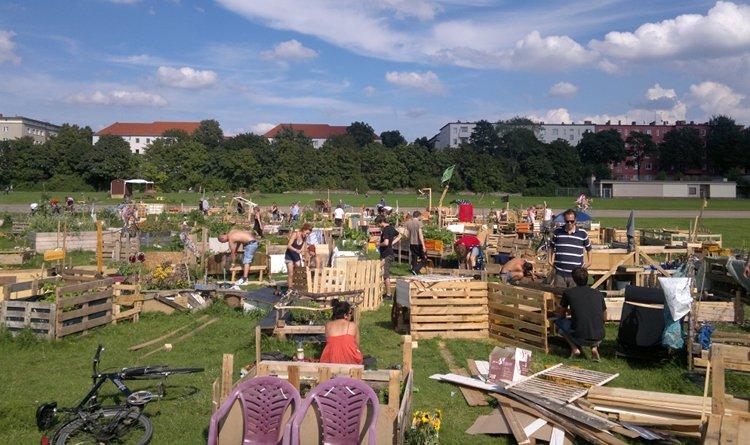 tempelhof1 Urban Gardening in Tempelhof: Wer zuletzt lacht …