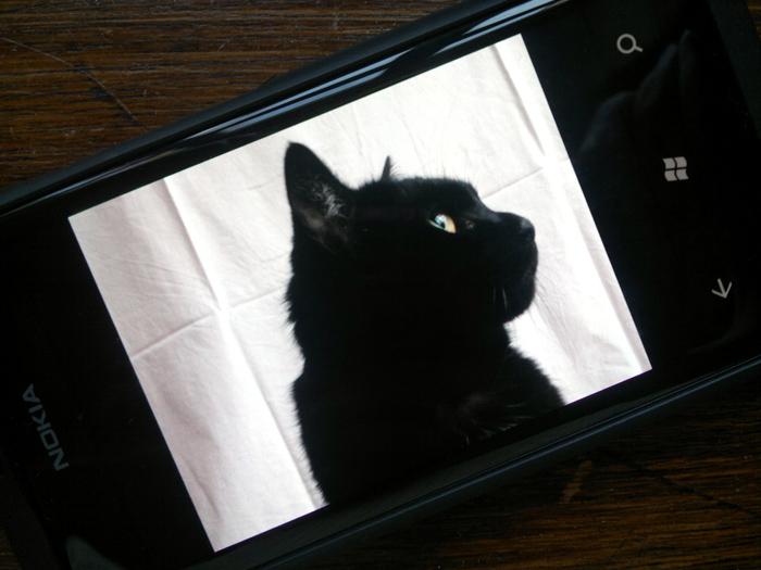 25012012212 Mit dem Nokia Lumia 800 durch Schrift und Bild